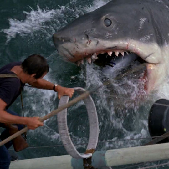 a review of the movie jaws Available on dvd/blu-ray, plus trailers and reviews for jaws  jaws became  the highest-grossing film of all time (at the time) and changed the game for.